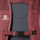 imagem do produto  Mochila Multi-uso Trail Blazer 30L - Salomon